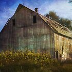 Barn on a Hill by Tizme