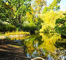 Crystal Palace Lake in Autumn by DonDavisUK