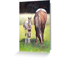 Appaloosa Mare and Foal Horse Portrait Greeting Card