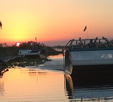 Everglades Airboat Sunset by ggpalms