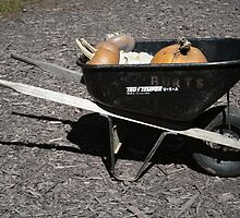 Burt's Wheelbarrow by jessiebea