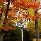 Rainbow Road by Gina Ruttle  (Whalegeek)