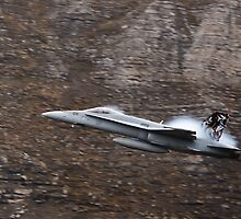 FA18 Hornet – Swiss Air Force, Fliegerstaffel 11 by Ted Lansing