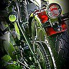 Triumph Classic by Luuezz
