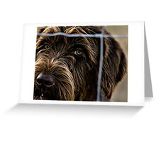 But I Want To Come Out And Play NOW! Greeting Card