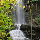 Billy Green Falls by deb cole
