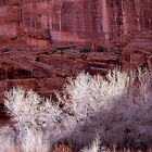 Canyon de Chelly National Monument, Arizona by Jeff Hathaway