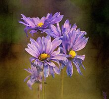 Floral decadence by Vasile Stan