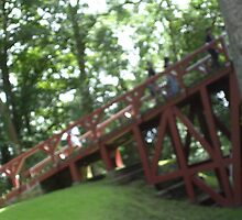 OMG!  |Ramp access for anone with mobility issues to get into Castle Coch by anaisnais