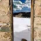 The Door Between by Jan Cartwright