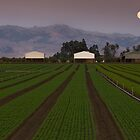 Moonrise over Hollister by Zane Paxton