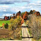Country Road Display by Deborah  Benoit