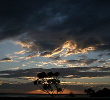 """Dawn of a new day"" Cowell South Australia by Robyn Jolly"