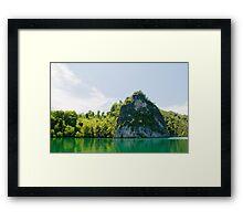 Green & Tranquil Framed Print