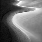 Beach Curves 2  by Dave  Miller