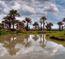 Tomkinson River, Arnhem Land by Erik Schlogl