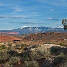 Utah panorama by Rachael Talibart
