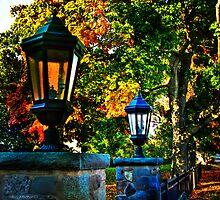 Red light by LudaNayvelt