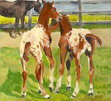 Appaloosa Foals Portrait by Oldetimemercan
