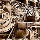 Steam Engine No 481 by Janet Fikar