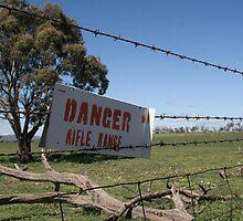 Danger!!! by Jodi Turner