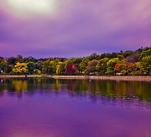 Brookline Reservoir park  by LudaNayvelt