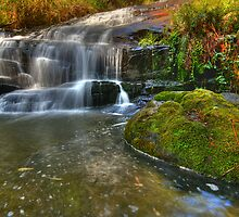 Cora Lyn Cascades by David  Hibberd