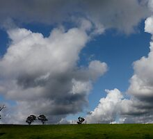 The Rainmaker by Bruce  Watson