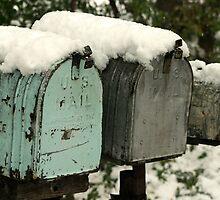 mailboxes by Lynne Prestebak