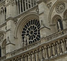 Notre Dame - another view by Rosie Appleton