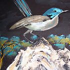 Blue Breasted Wren - a delightful little bird by Margaret Morgan (Watkins)
