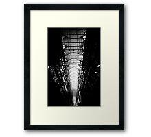 Dark Arches Framed Print