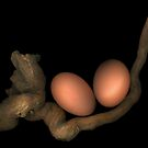 Still Life with Eggs by TheWalkerTouch