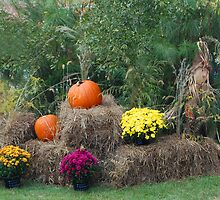 Autumn Display  by Lisa Jones Caldwell