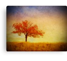 The Wednesday Tree Canvas Print