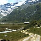 Pathway in Fextal, Switzerland  by Monica Engeler
