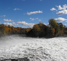 Healey Falls by Tracy Faught