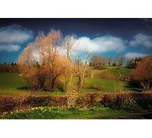 Landscape Alive Photographic Print