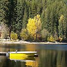 Fall Colours by Jeff Ashworth & Pat DeLeenheer