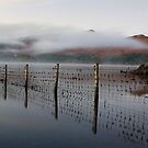 Mist on Derwent Water by Jon Tait