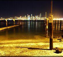 Seattle Skyline by Mari  Wirta