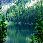 Pristine Alpine Lake by Tori Snow