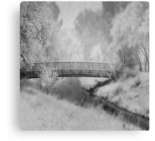 A Winter's dream Canvas Print