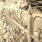 Old Iron Fence by Seth LaGrange