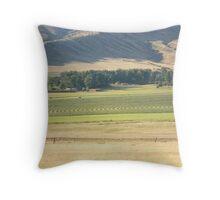 Alfalfa Field Throw Pillow