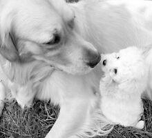 Making Friends by PPPhotoArt