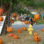 Pumpkin Way by foxyphotography