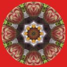 Watermelon Hearts.. Kaleidoscope Tshirt by judygal