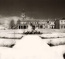 Werribee Mansion by Angie Muccillo