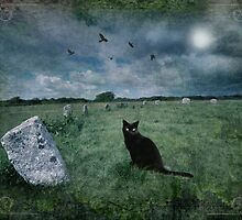 Cornish Black Cat by Angie Latham